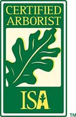 ISA certificate